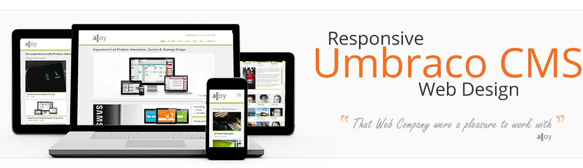 Responsive Umbraco website design, Surrey